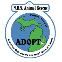 NBS Animal rescue .jpg