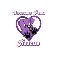 Awesome Paws Rescue_Logo.jpg
